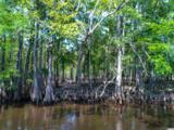 100 Waccamaw River Dr. - Photo 11