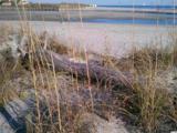 415 Ocean Creek Dr. - Photo 31