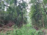 45.3 acre Old Cemetary Rd. - Photo 3