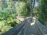 131 Rosewater Loop - Photo 33