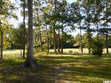 3369 Cedar Creek Run - Photo 10