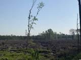 26.5 Pine Tree Ln. - Photo 2