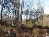 162 Acres Savannah Bluff Rd. - Photo 4