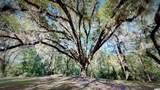 415 Grand Oak Dr. - Photo 28