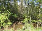 Tract 1 Swimming Hole Rd. - Photo 2