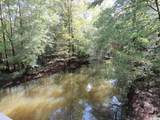Tract 2 Swimming Hole Rd. - Photo 5