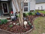 9748 Conifer Ln. - Photo 3