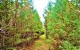 12.37 Acres Highway 90 - Photo 5