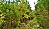 12.37 Acres Highway 90 - Photo 7