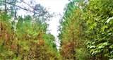 12.37 Acres Highway 90 - Photo 8