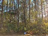 Lot 86 Lantana Circle - Photo 6
