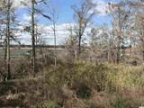 Lot 17 & 18 Emerson Loop - Photo 8