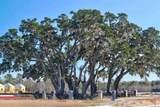 5021 Magnolia Village Way - Photo 32