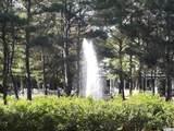 9307 Whisper Park Dr. - Photo 9