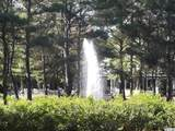 9297 Whisper Park Dr. - Photo 9