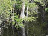 221 Maple Oak Dr. - Photo 38