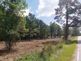 TBD Dog Bluff Rd. - Photo 1