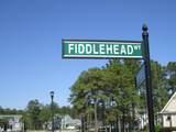 919 Fiddlehead Way - Photo 9