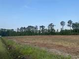 Lot 10 Highway 701 South - Photo 4