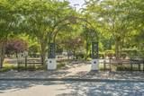 1257 Park Hill Dr. - Photo 13