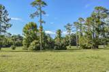 1321 Whooping Crane Dr. - Photo 15