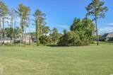 1321 Whooping Crane Dr. - Photo 5