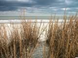 2500 Sand Dunes Dr. - Photo 40