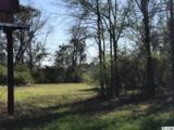 11 Acres Highway 501 - Photo 7