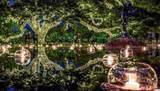 245 Star Lake Dr. - Photo 35