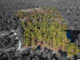 Lot 146 Ocean Lakes Loop - Photo 10