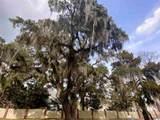 283 Berry Tree Dr. - Photo 18