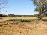 3925 Red Bluff Rd. - Photo 4