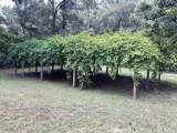 902 Old Plantation Dr. - Photo 6
