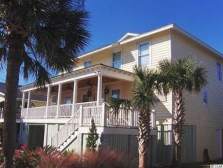 244 Norris Drive, Pawleys Island, SC 29585 (MLS #1608068) :: James W. Smith Real Estate Co.