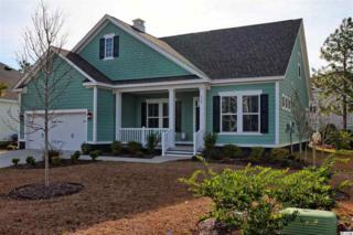 178 Winston Circle, Pawleys Island, SC 29585 (MLS #1624172) :: The Litchfield Company