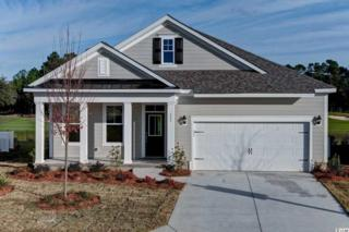 224 Ponde Vedra, Murrells Inlet, SC 29576 (MLS #1702267) :: The Litchfield Company