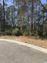 Lot 71 Sweet Grass, Georgetown, SC 29440 (MLS #1704492) :: James W. Smith Real Estate Co.