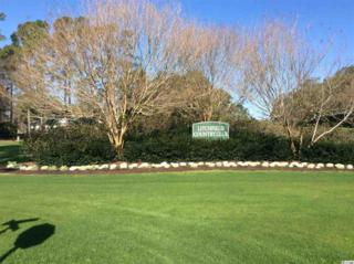 Lot 1` Hawthorn Drive, Pawleys Island, SC 29585 (MLS #1704895) :: James W. Smith Real Estate Co.
