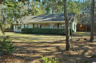 311 Linden Circle, Pawleys Island, SC 29585 (MLS #1706315) :: James W. Smith Real Estate Co.