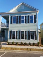 1423 Peterson Street, Myrtle Beach, SC 29577 (MLS #1706520) :: The Litchfield Company