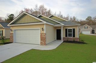 318 Clearwater Dr, Pawleys Island, SC 29585 (MLS #1706564) :: The Litchfield Company