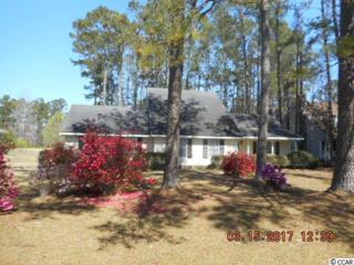 326 Francis Parker Rd, Georgetown, SC 29440 (MLS #1706611) :: The Litchfield Company