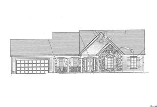 TBD Devine Street, Loris, SC 29569 (MLS #1706684) :: The Litchfield Company