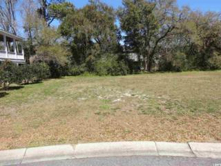 Lot 26 Orchard Ave, Murrells Inlet, SC 29576 (MLS #1706686) :: The Litchfield Company