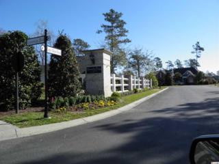 Lot 22 Gray Moss, Murrells Inlet, SC 29576 (MLS #1706759) :: The Litchfield Company