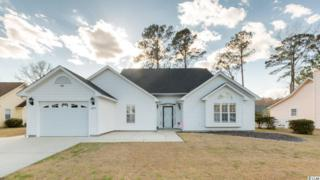 284 Nature Trail, Little River, SC 29566 (MLS #1706774) :: The Litchfield Company