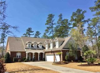 261 Chamberlin Rd, Myrtle Beach, SC 29588 (MLS #1706779) :: The Litchfield Company