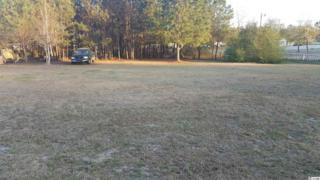 S/S Hwy 905 Lot 2, Longs, SC 29568 (MLS #1706784) :: The Litchfield Company