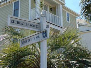 19 Rookery Trail, Pawleys Island, SC 29585 (MLS #1706851) :: James W. Smith Real Estate Co.