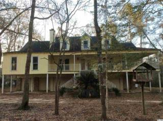 419 Otter Run Road, Pawleys Island, SC 29585 (MLS #1706855) :: James W. Smith Real Estate Co.